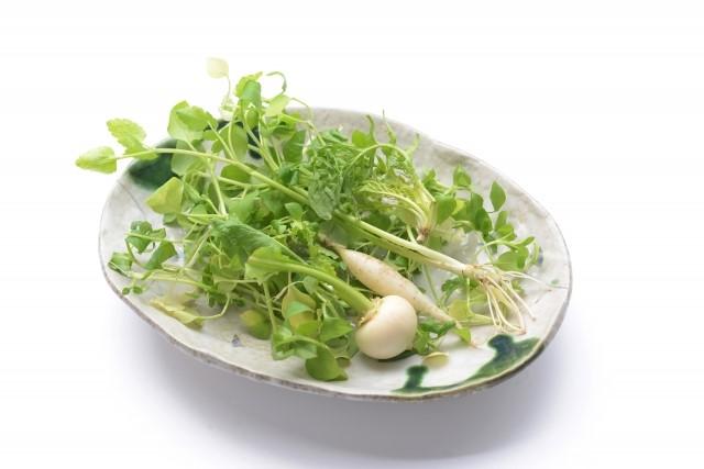 春の七草の1つである「せり」の栄養と効能・効果と食べ方!